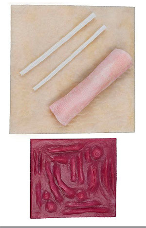 Basic Student Tissue Pack Image