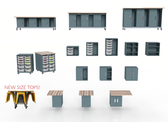 Chameleon Classroom System Image