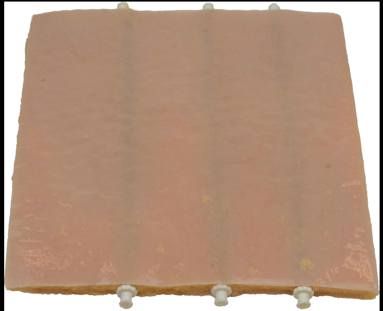 Basic Vessel Plate Image